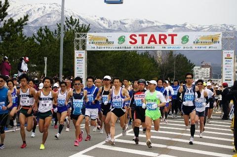 佐渡トキマラソンイメージ