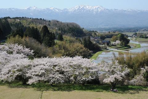 春4月山里の春