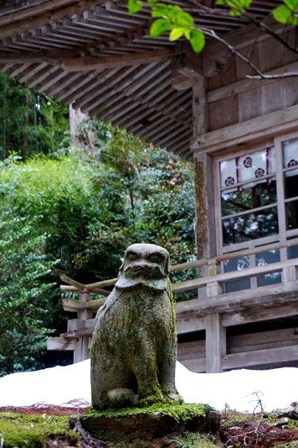 佐渡草苅神社狛犬