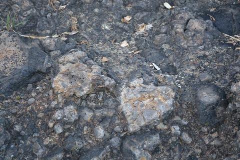 佐渡枕状溶岩ハート型