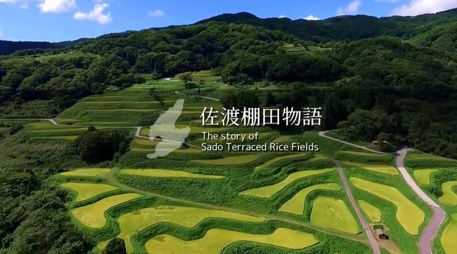 佐渡棚田物語 The story of Sado Terraced Rice Field