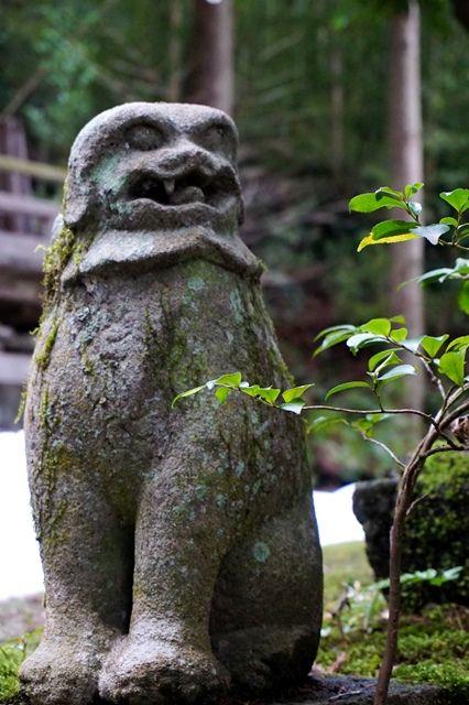 佐渡草苅神社狛犬1