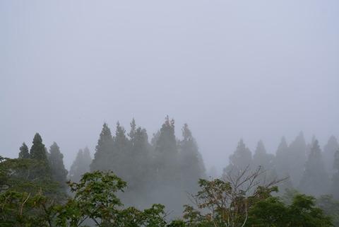 佐渡石名天然杉展望台からの眺め