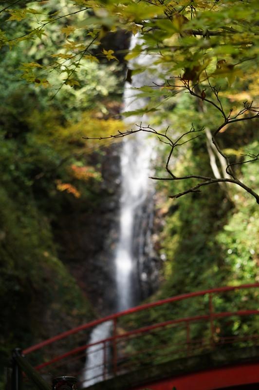 佐渡養老の滝
