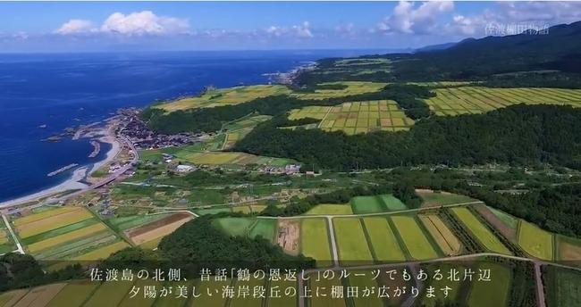佐渡棚田物語 The story of Sado Terraced Rice Field北片辺