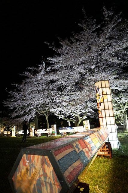 佐渡真野公園ライトアップ