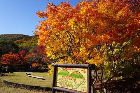 佐渡紅葉山公園7