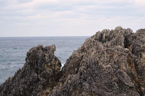 佐渡尖閣湾3