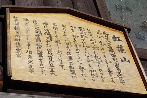 佐渡紅葉山公園9