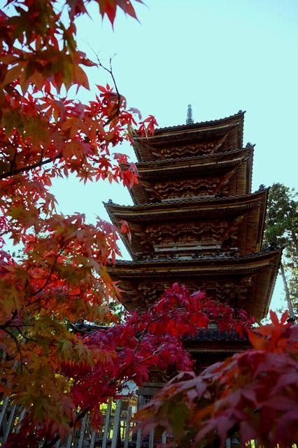 佐渡妙宣寺五重の塔2
