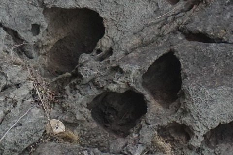 弁慶のはさみ岩12