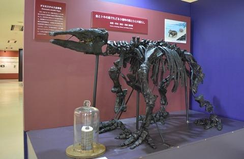 佐渡博物館恐竜模型