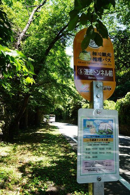 金山ぐるりん相川観光循環バス5道遊トンネル