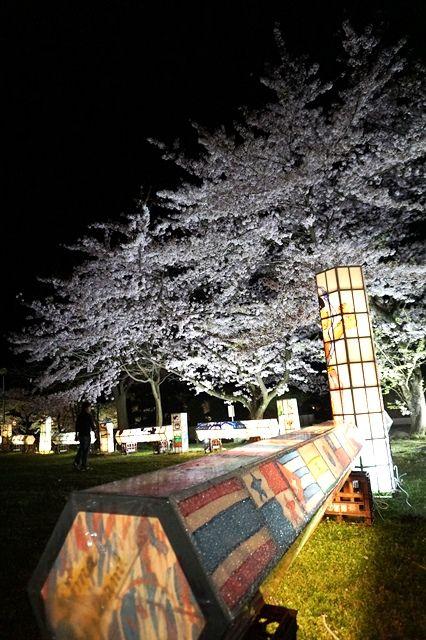 佐渡真野桜まつり