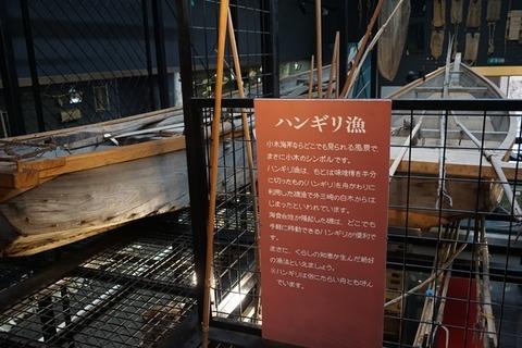佐渡博物館新館6