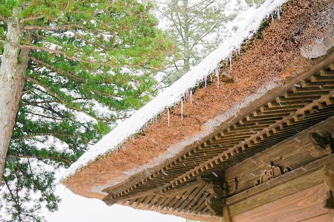 冬の国分寺3