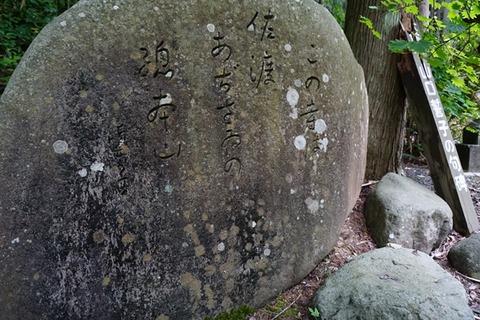 蓮華峰寺山口誓子の碑