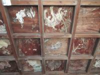 冠者神社の天井絵