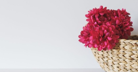 flower18-1200x630