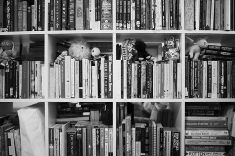 books-672078_640