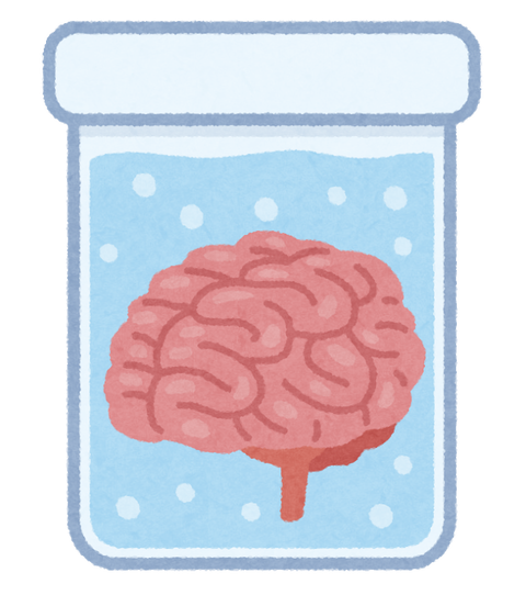 brain_nou_suisou