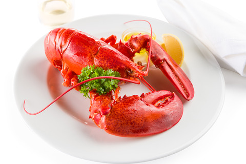 buy_maine_lobsters_online_LRG