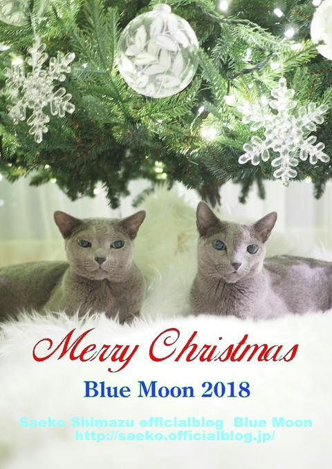 2018クリスマス会報用