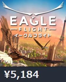 42199EagleFlight0
