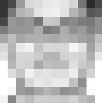 46203GroSJ
