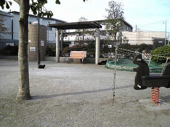 20081102neko01