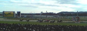 府中競馬場20051120