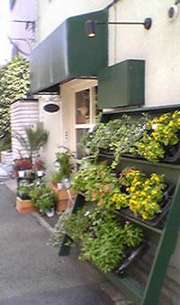 園芸200408