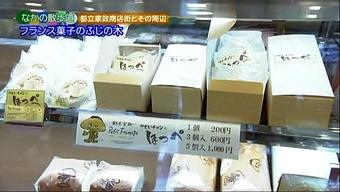 20120701fujinoki03