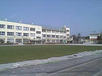 20070304wakamiyagreen03