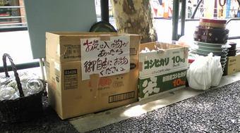 20090913shobun01
