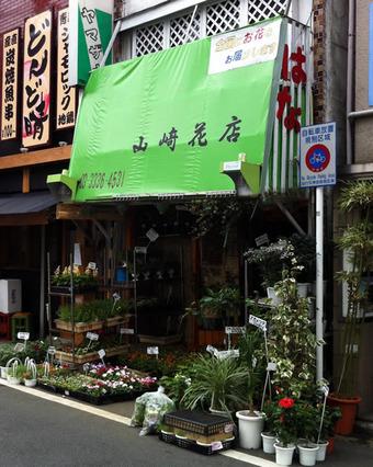 20110806yamazaki