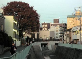 20091206野方取水口02