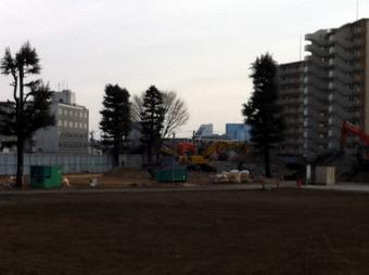 20110123sirasagiapart2