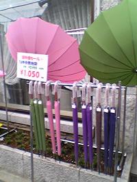 16本骨の傘