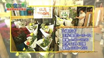 2012yamazakihana03