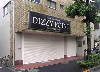 20080704dizzypoint
