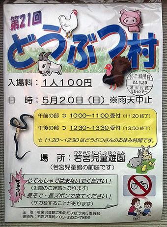 20120513wakamiya_dowbutu