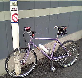 20070217fujimidai_chari