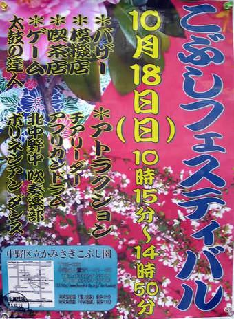 20091017かみさぎこぶし園