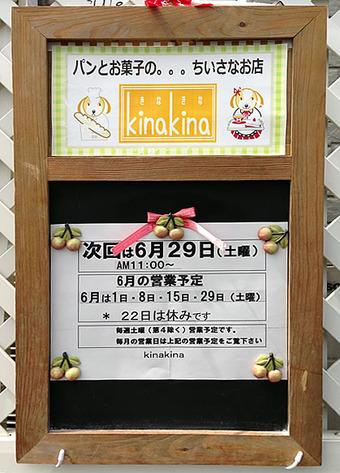 20130615kinakina2
