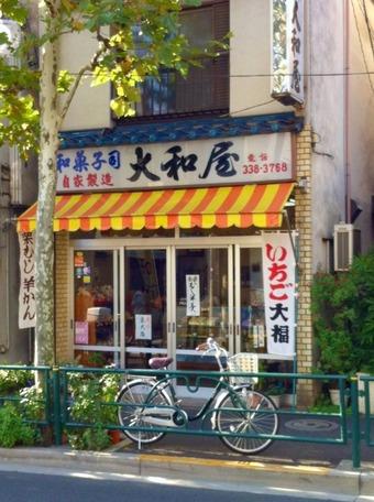 20111125yamaoya