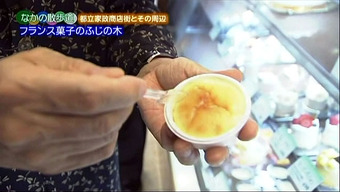 20120701fujinoki04