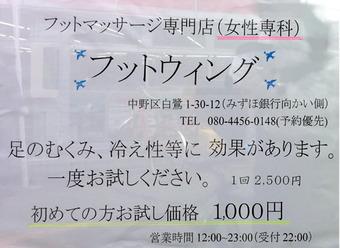 20111106footcair02