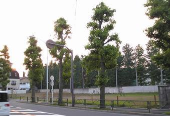 20100613 グランベル 上鷺宮 新青梅街道 消防署 02