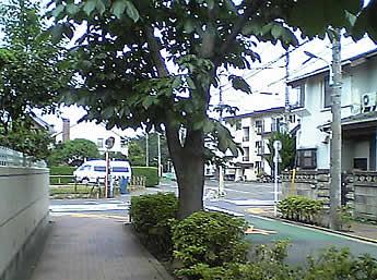 sunday28_2006